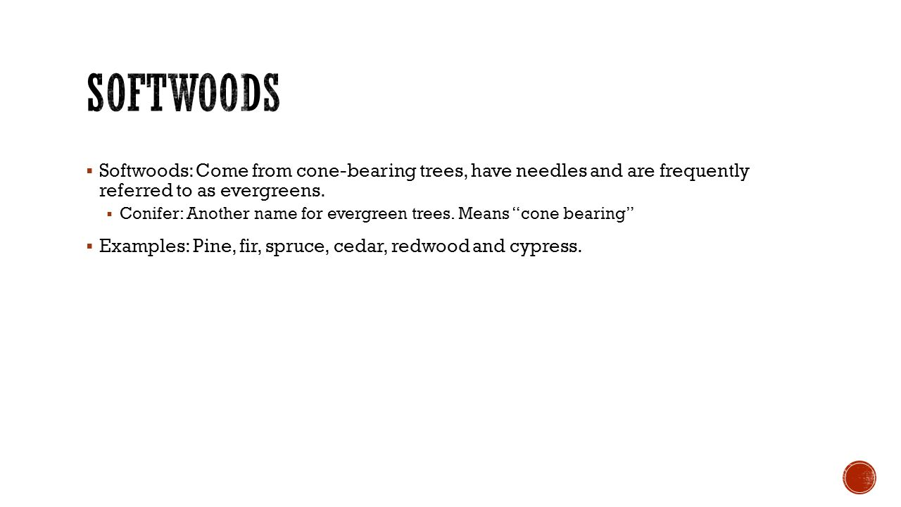  Softwoods: Come from cone-bearing trees, have needles and are frequently referred to as evergreens.  Conifer: Another name for evergreen trees. Mea