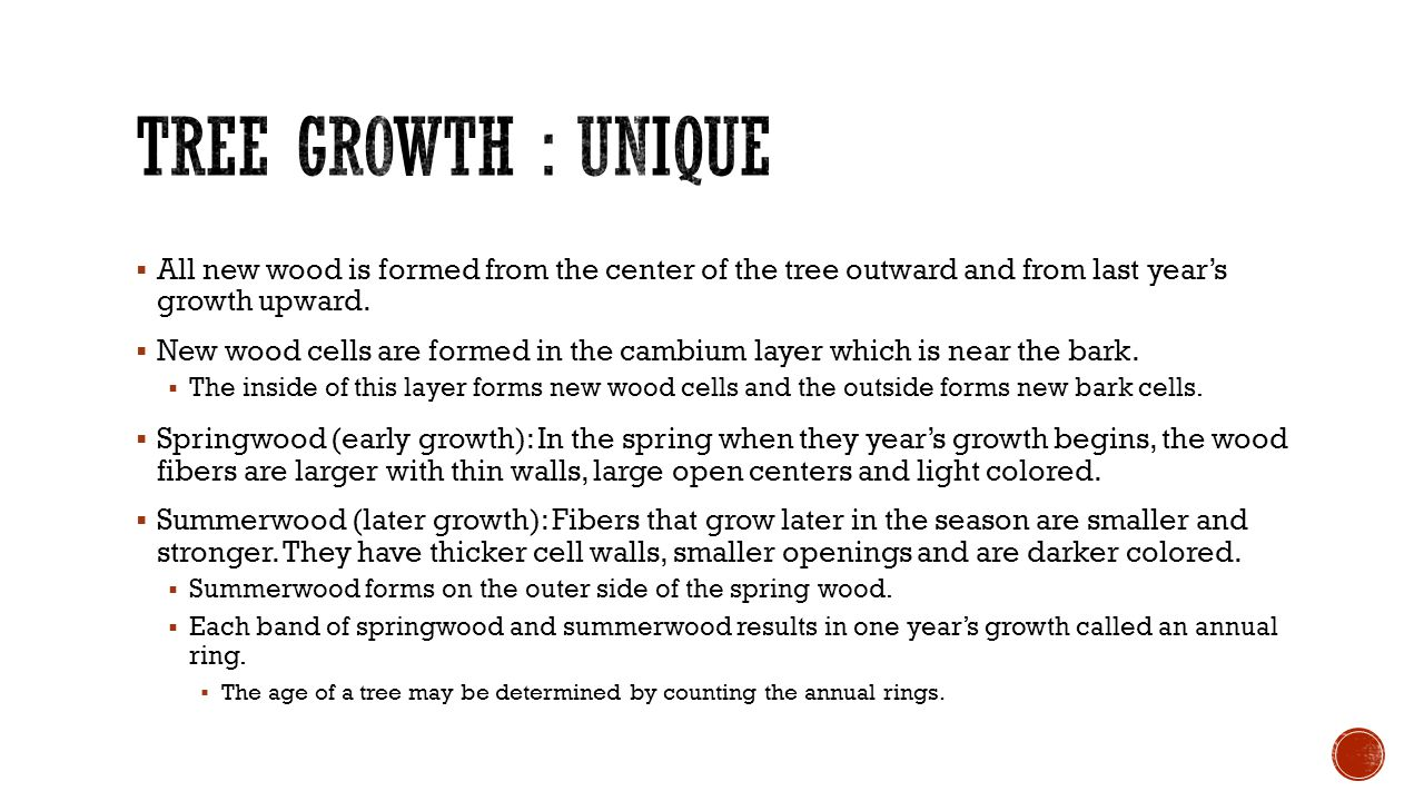  All new wood is formed from the center of the tree outward and from last year's growth upward.  New wood cells are formed in the cambium layer whic