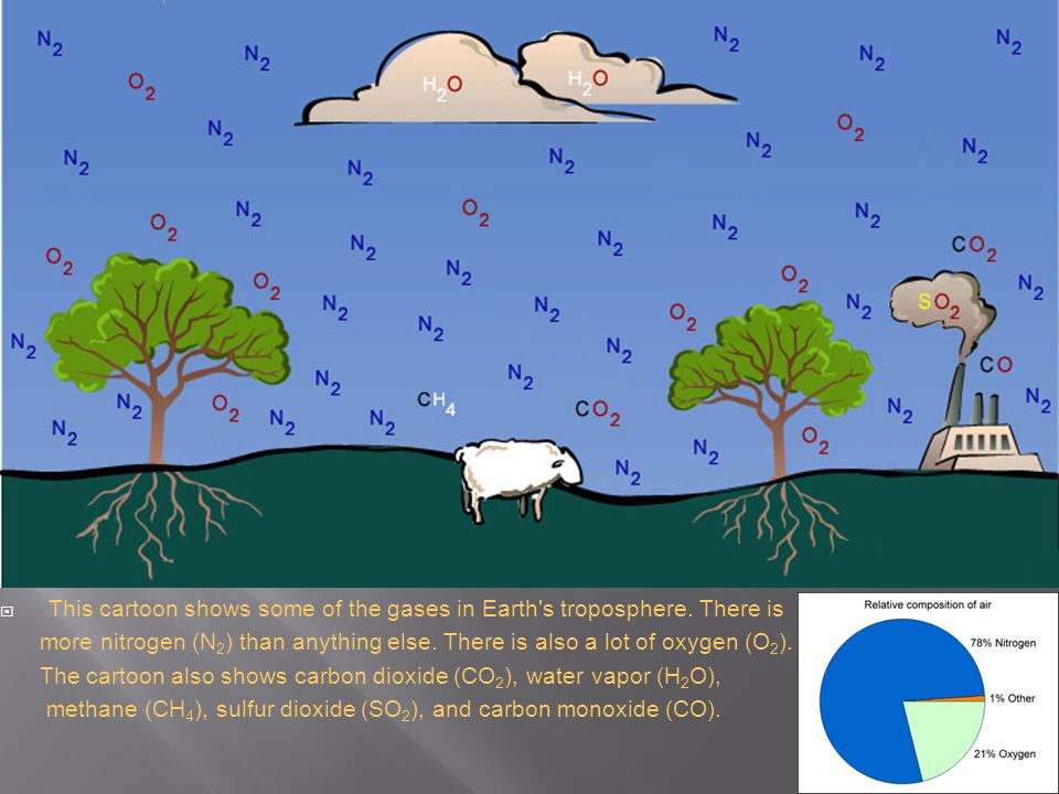  This cartoon shows some of the gases in Earth's troposphere. There is more nitrogen (N 2 ) than anything else. There is also a lot of oxygen (O 2 ).