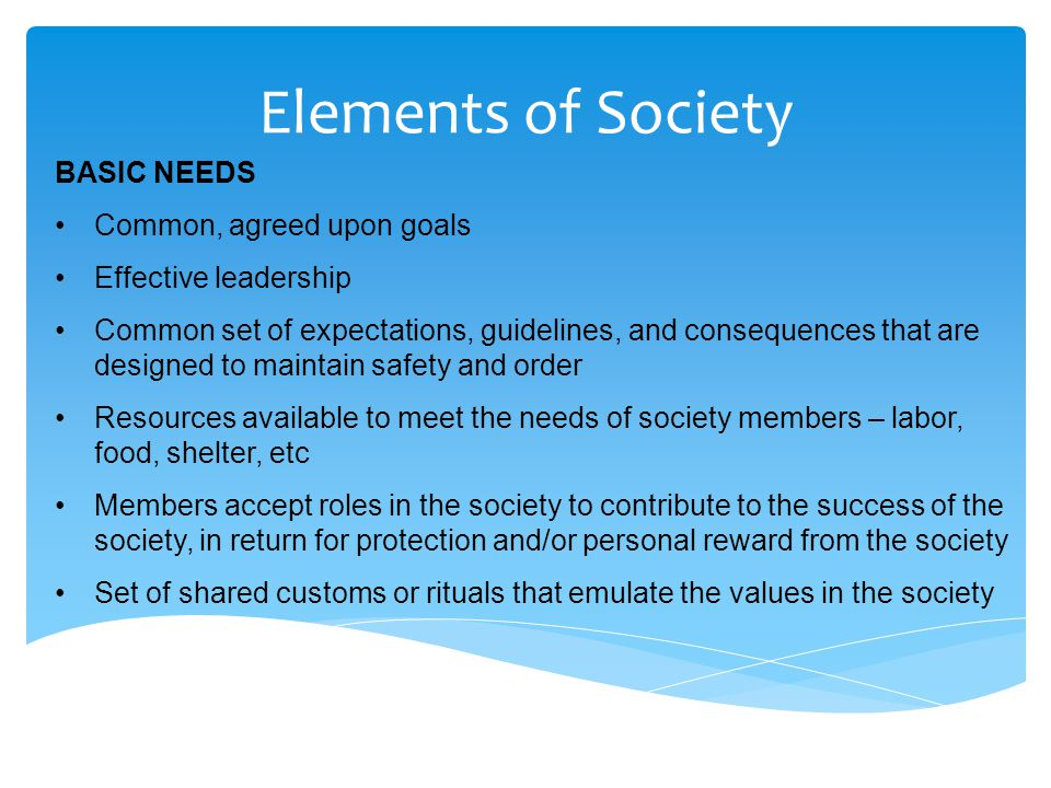 Elements of Society WHAT CAN CAUSE THE DESTRUCTION OF SOCIETY.