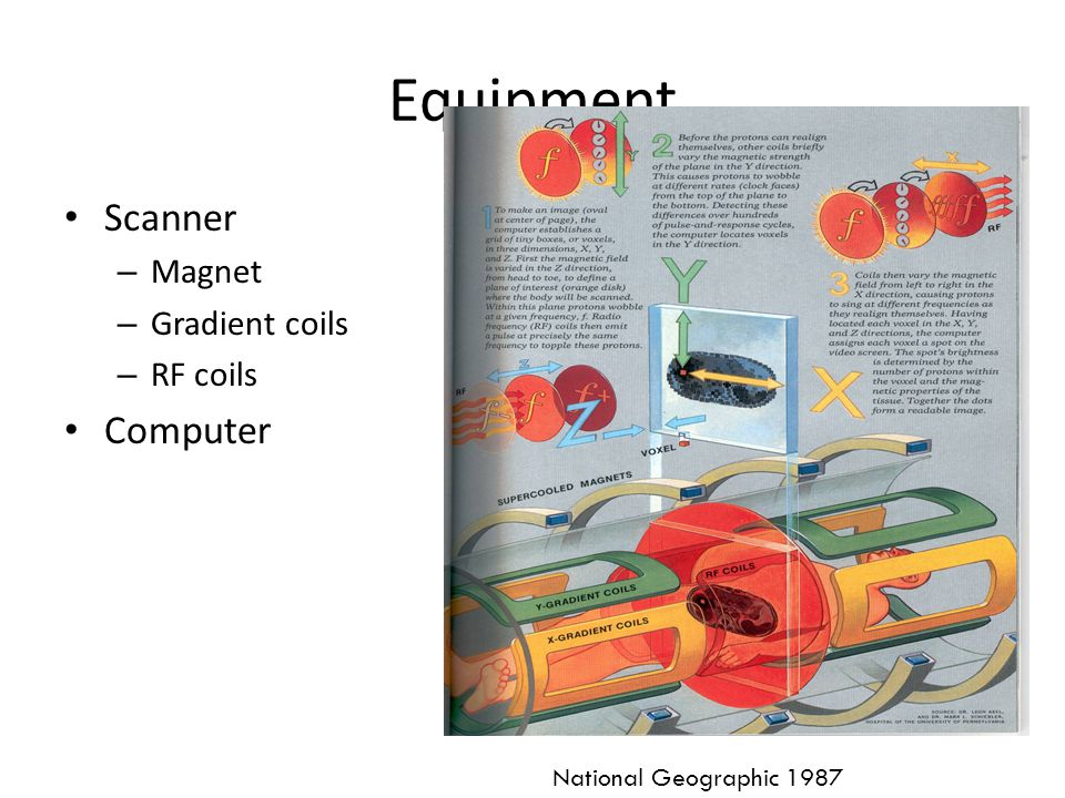 Equipment Scanner – Magnet – Gradient coils – RF coils Computer National Geographic 1987