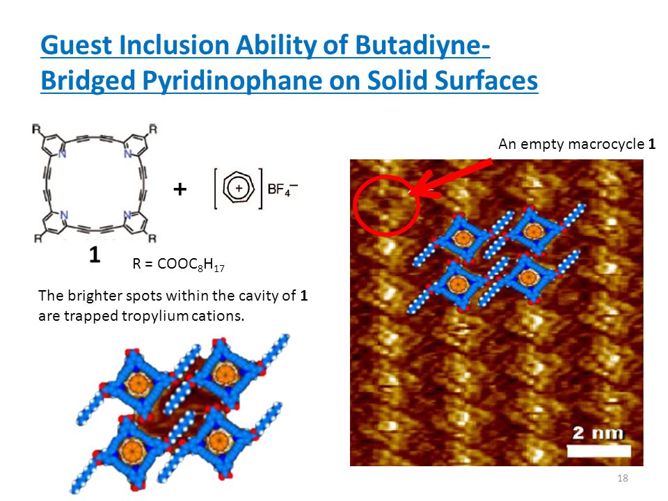 Guest Inclusion Ability of Butadiyne- Bridged Pyridinophane on Solid Surfaces The brighter spots within the cavity of 1 are trapped tropylium cations.