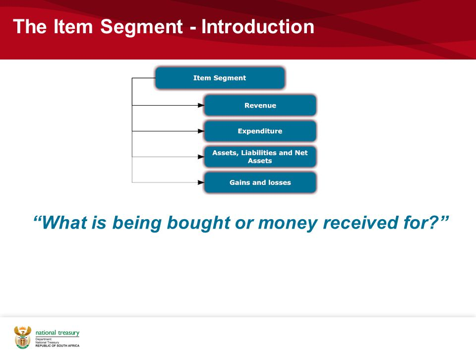 The Item Segment - Introduction What is being bought or money received for?