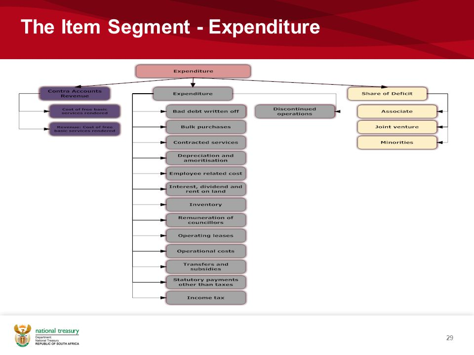 29 The Item Segment - Expenditure