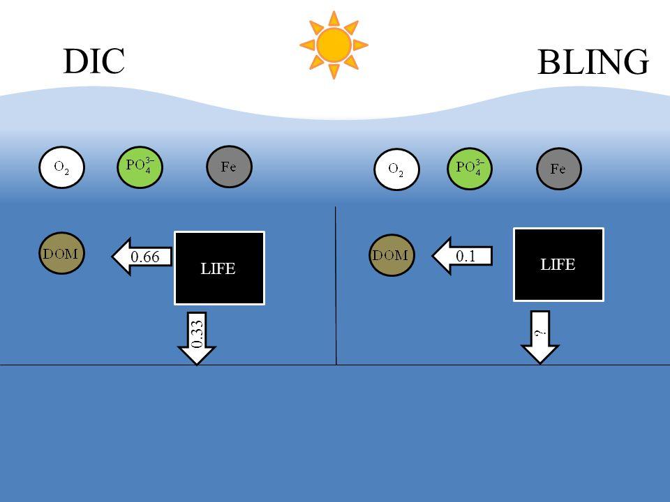 LIFE DIC BLING 0.66 0.33 LIFE 0.1
