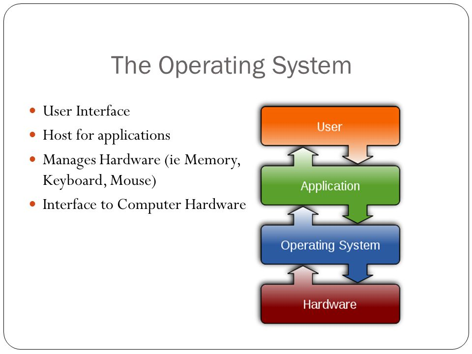 The Operating System User Interface Host for applications Manages Hardware (ie Memory, Keyboard, Mouse) Interface to Computer Hardware