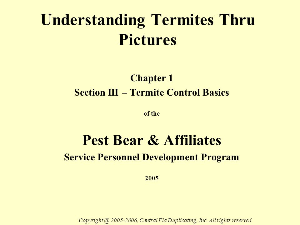 Understanding Termites Thru Pictures Chapter 1 Section III – Termite Control Basics of the Pest Bear & Affiliates Service Personnel Development Program 2005 Copyright @ 2005-2006, Central Fla Duplicating, Inc.