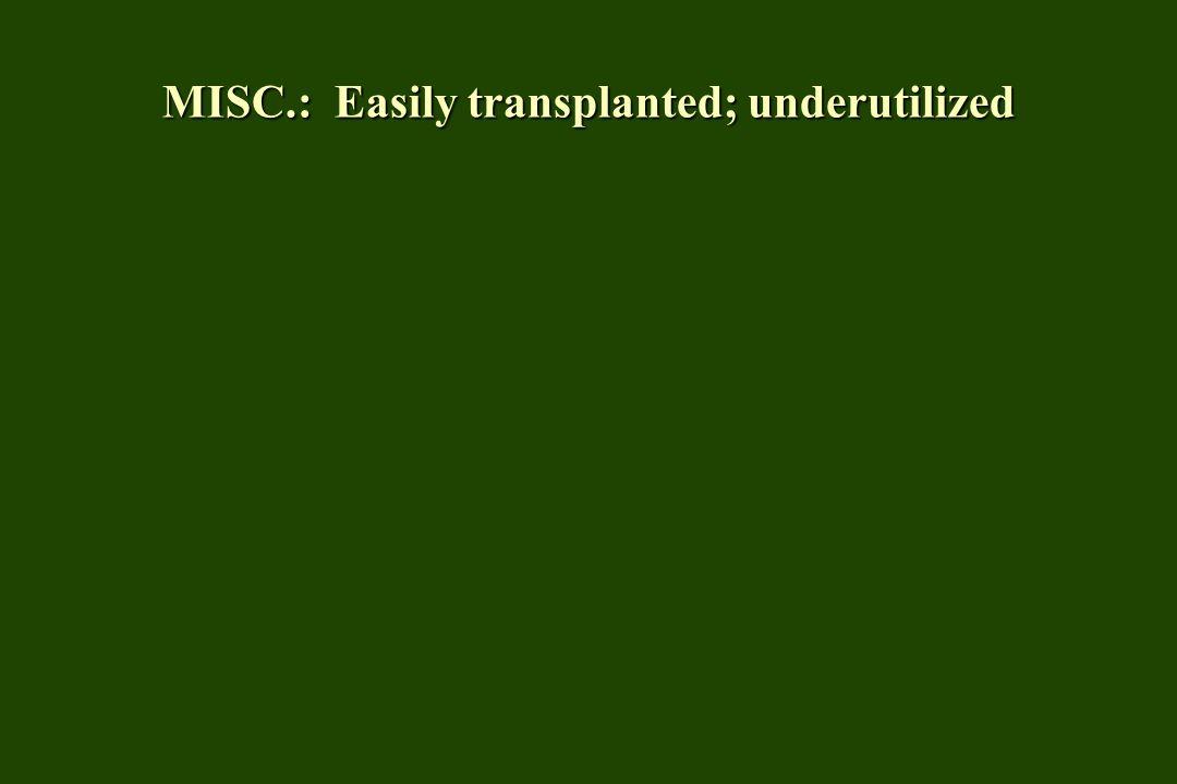 MISC.: Easily transplanted; underutilized
