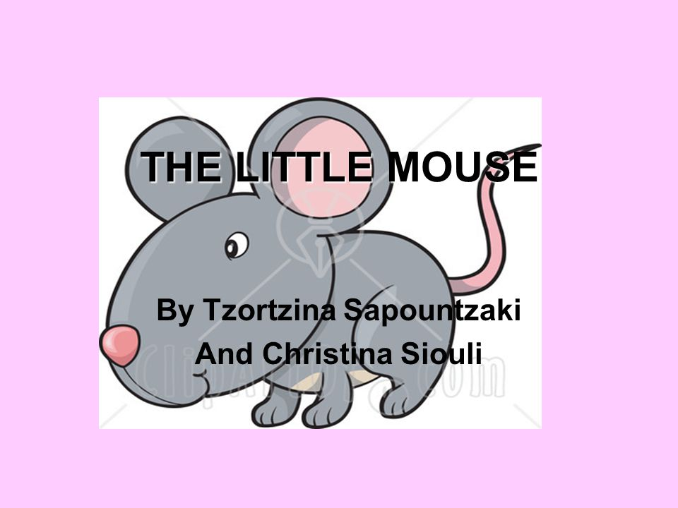 THE LITTLE MOUSE By Tzortzina Sapountzaki And Christina Siouli