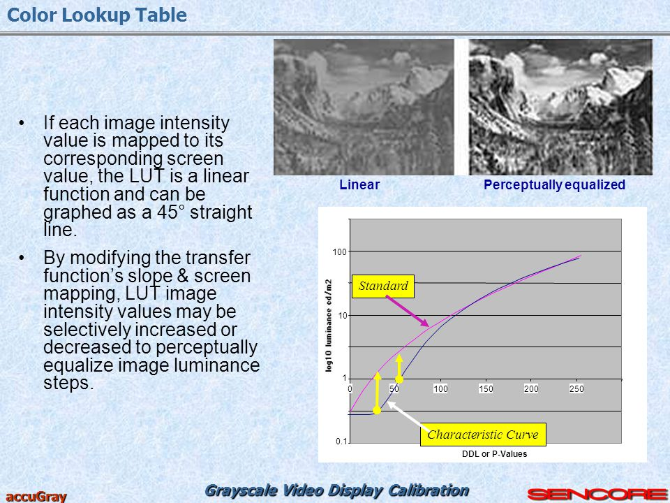 Grayscale Video Display Calibration accuGray If each image intensity value is mapped to its corresponding screen value, the LUT is a linear function a
