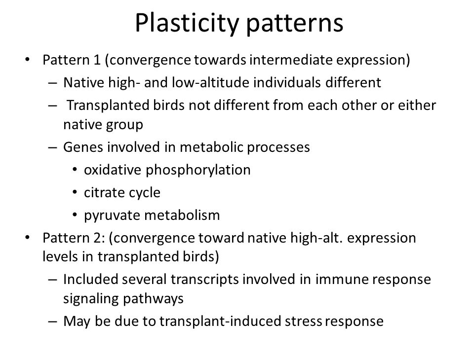 Plasticity patterns Pattern 1 (convergence towards intermediate expression) – Native high- and low-altitude individuals different – Transplanted birds not different from each other or either native group – Genes involved in metabolic processes oxidative phosphorylation citrate cycle pyruvate metabolism Pattern 2: (convergence toward native high-alt.