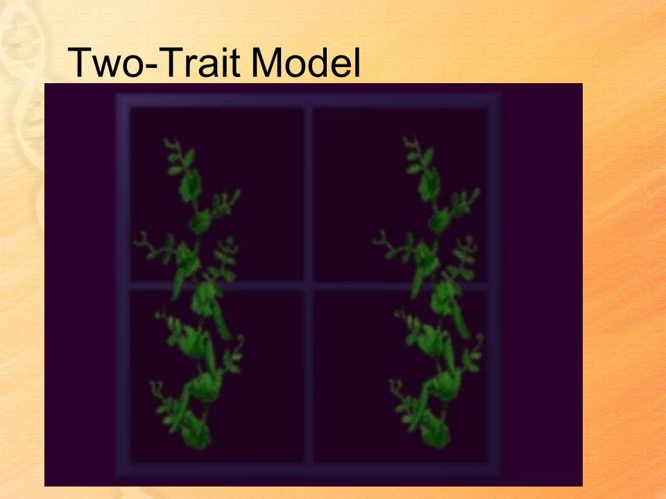 Two-Trait Model