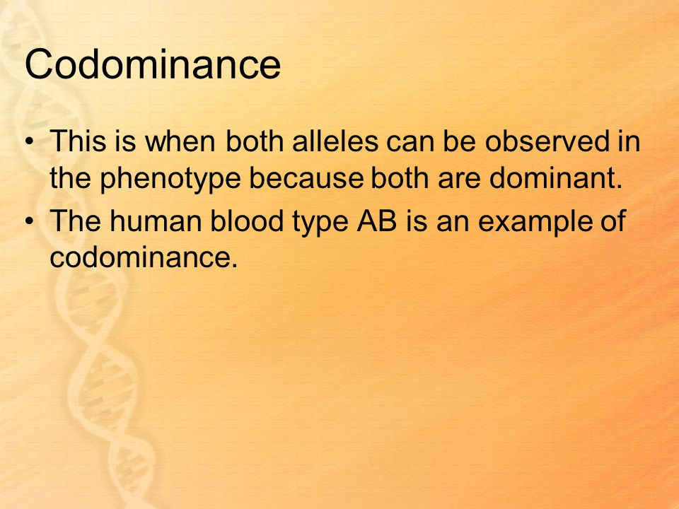 Codominance This is when both alleles can be observed in the phenotype because both are dominant.