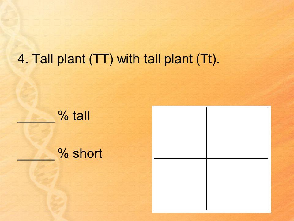 4. Tall plant (TT) with tall plant (Tt). _____ % tall _____ % short