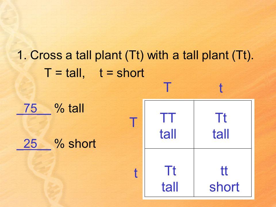 1. Cross a tall plant (Tt) with a tall plant (Tt).