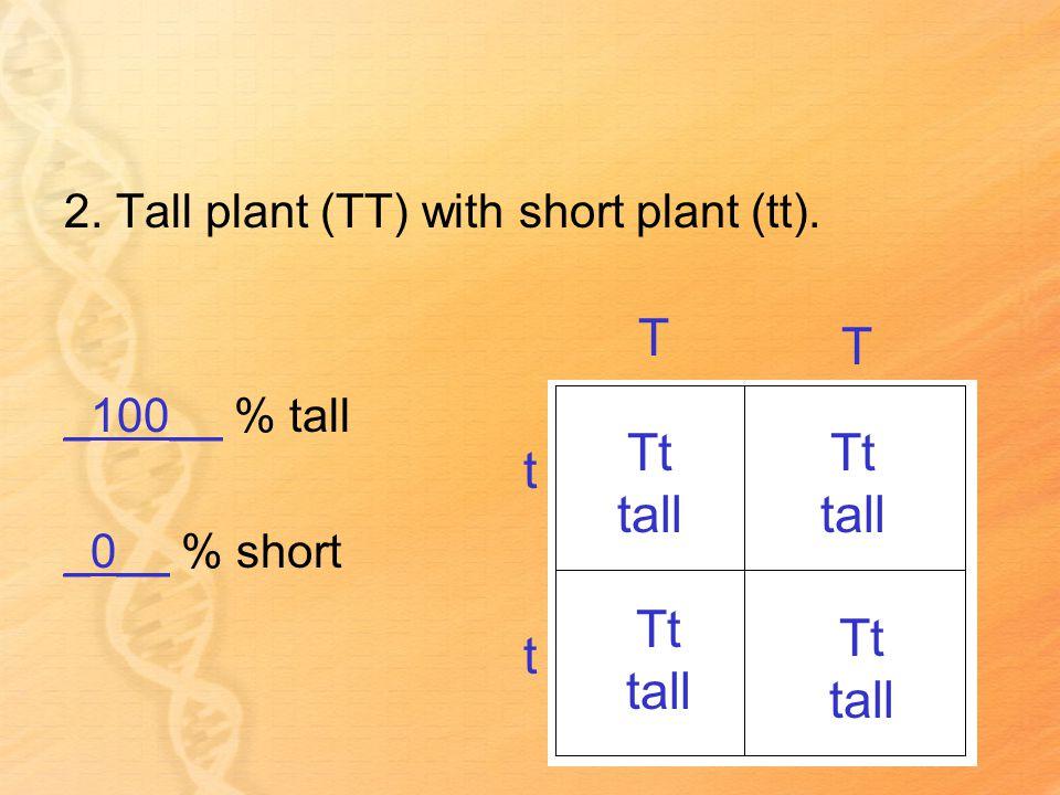2. Tall plant (TT) with short plant (tt).