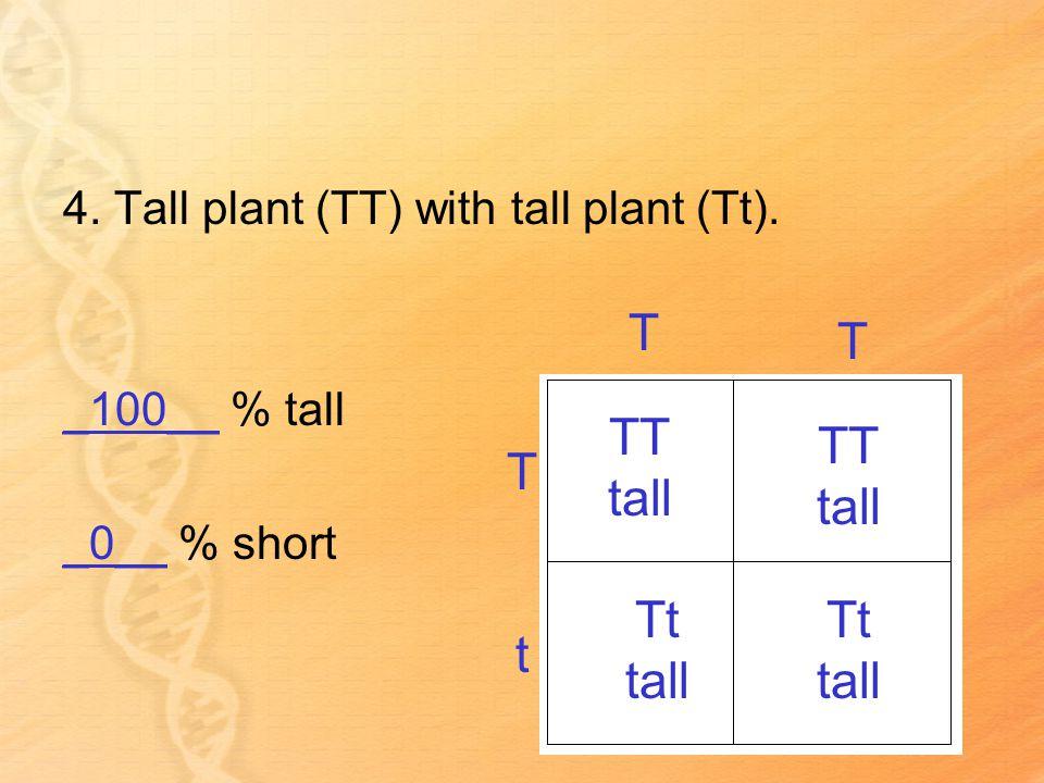4. Tall plant (TT) with tall plant (Tt).
