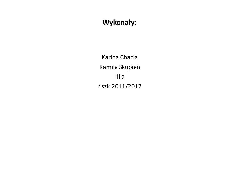 Wykonały: Karina Chacia Kamila Skupień III a r.szk.2011/2012