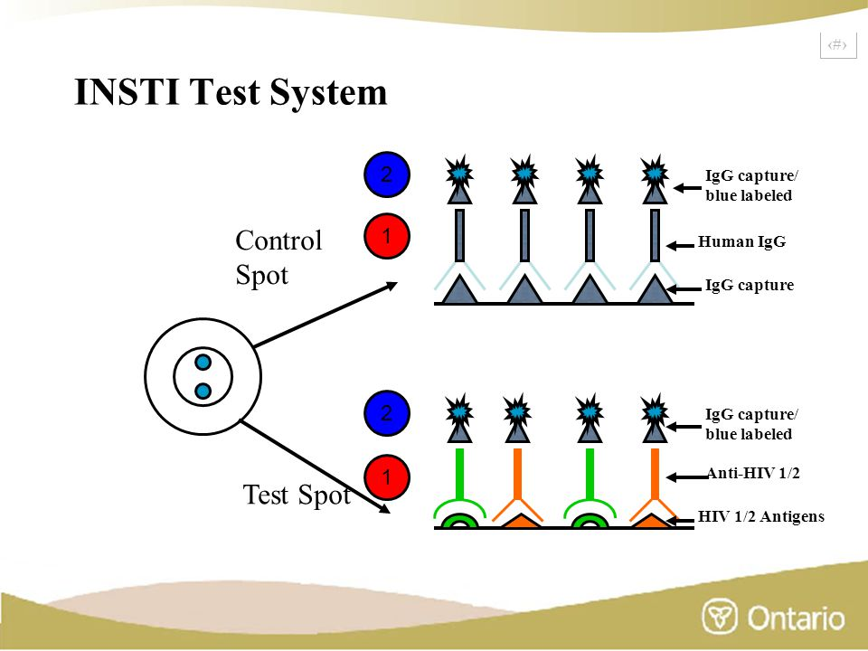 5 INSTI Test System Human IgG IgG capture/ blue labeled IgG capture Control Spot Test Spot IgG capture/ blue labeled Anti-HIV 1/2 HIV 1/2 Antigens 1 1 2 2