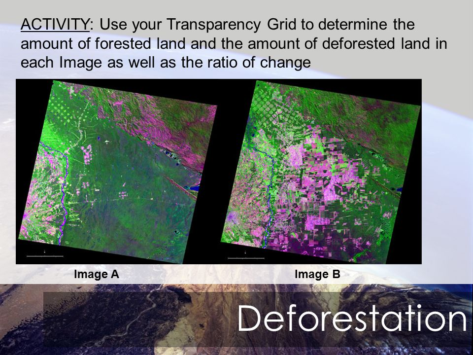 Deforestation ACTIVITY: Use your Transparency Grid to determine the amount of forested land and the amount of deforested land in each Image as well as the ratio of change Image AImage B