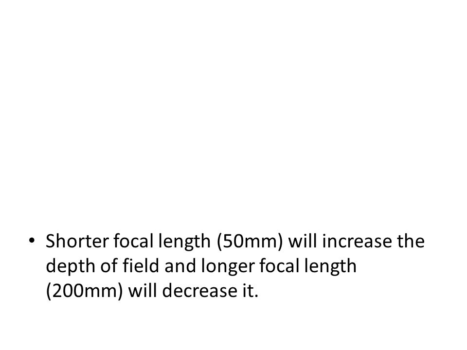 Shorter focal length (50mm) will increase the depth of field and longer focal length (200mm) will decrease it.