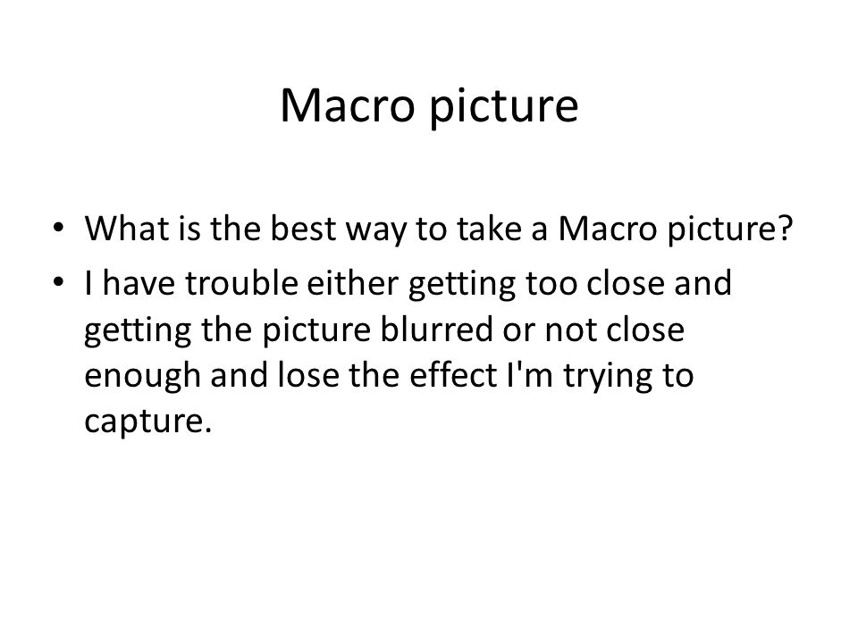 Macro picture What is the best way to take a Macro picture.