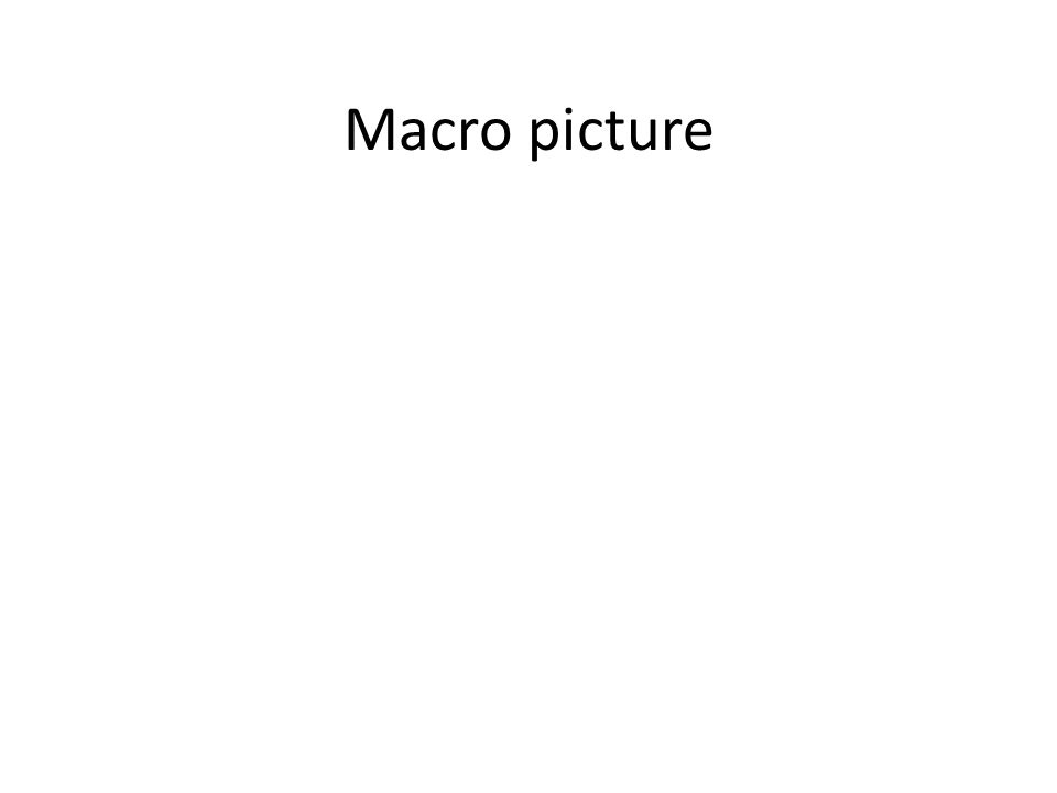 Macro picture