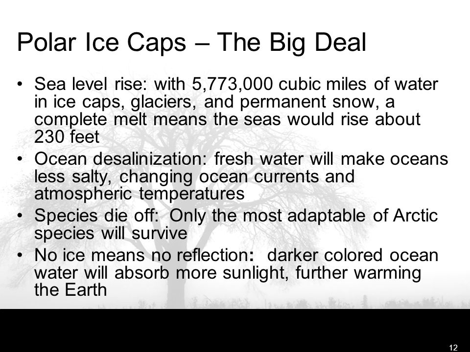 Free Template from www.brainybetty.com12 Polar Ice Caps – The Big Deal Sea level rise: with 5,773,000 cubic miles of water in ice caps, glaciers, and