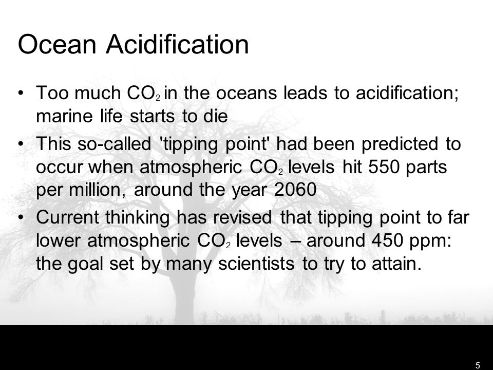 Free Template from www.brainybetty.com5 Ocean Acidification Too much CO 2 in the oceans leads to acidification; marine life starts to die This so-called tipping point had been predicted to occur when atmospheric CO 2 levels hit 550 parts per million, around the year 2060 Current thinking has revised that tipping point to far lower atmospheric CO 2 levels – around 450 ppm: the goal set by many scientists to try to attain.