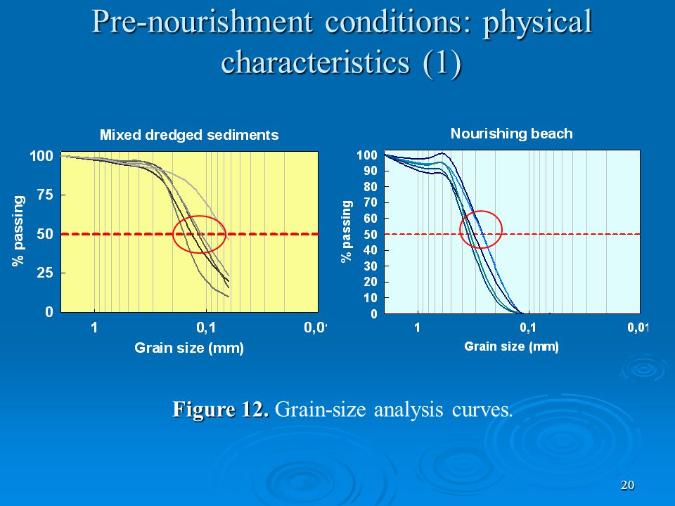 20 Pre-nourishment conditions: physical characteristics (1) Figure 12.