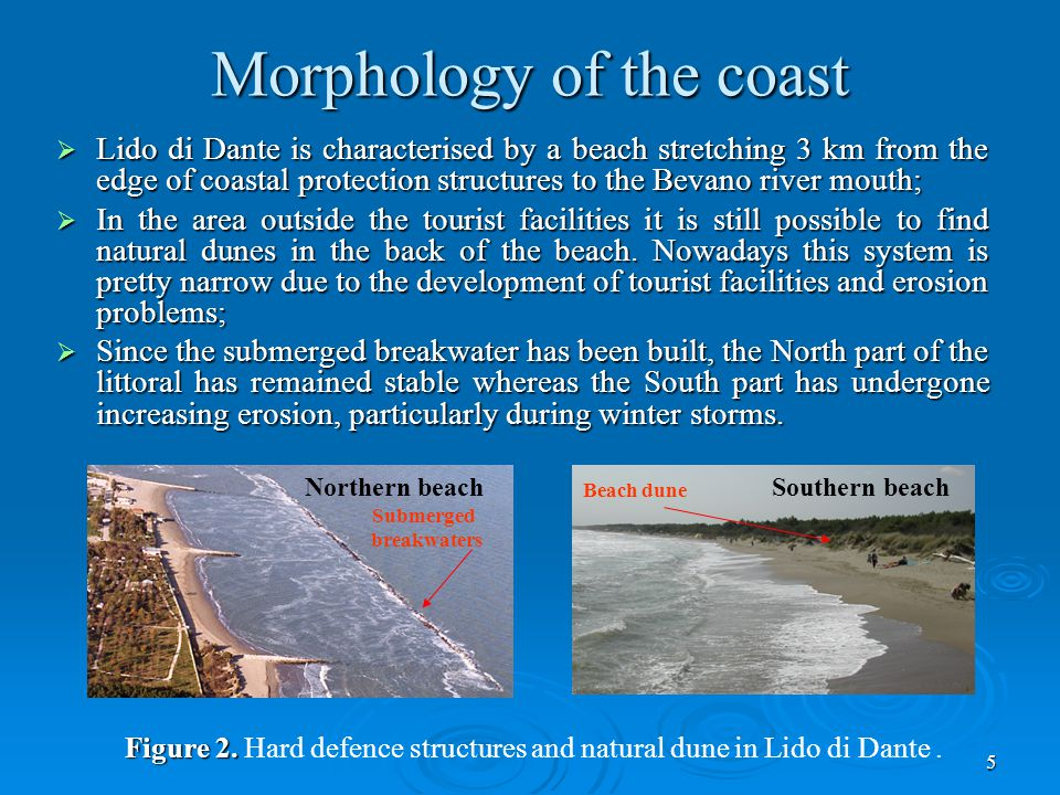 5 Morphology of the coast  Lido di Dante is characterised by a beach stretching 3 km from the edge of coastal protection structures to the Bevano river mouth;  In the area outside the tourist facilities it is still possible to find natural dunes in the back of the beach.