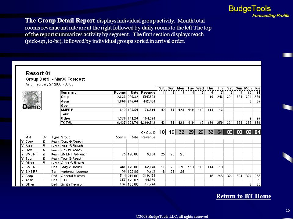 ©2003 BudgeTools LLC, all rights reserved 15 The Group Detail Report displays individual group activity.