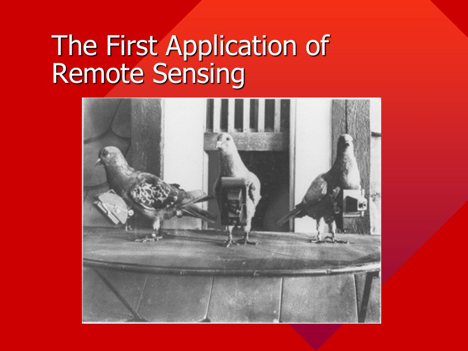 The First Application of Remote Sensing