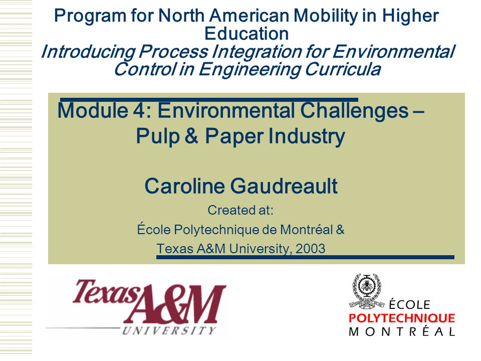Program for North American Mobility in Higher Education Introducing Process Integration for Environmental Control in Engineering Curricula Module 4: E