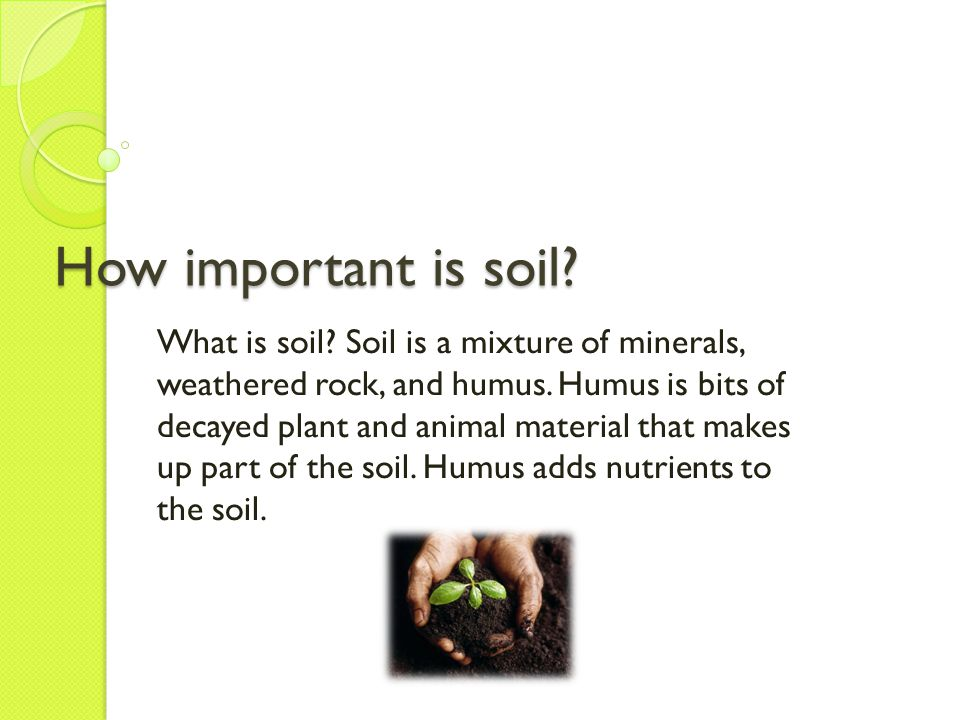 Soil formation Soil forms when weathering occurs.