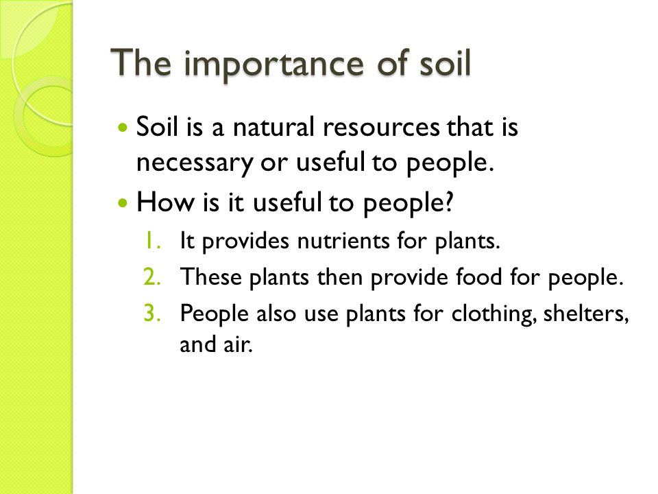 Not all soils are equal Soils contain different amounts of humus and different kinds of rocks.