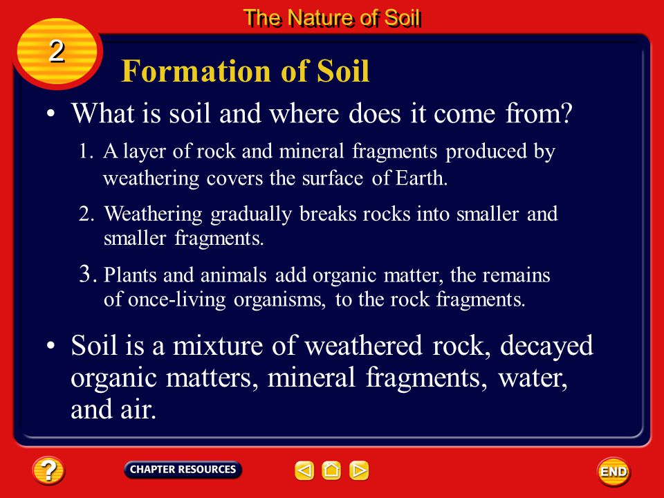 Formation of Soil Soil is found in many places—backyards, empty city lots, farm fields, gardens, and forests. 2 2 The Nature of Soil
