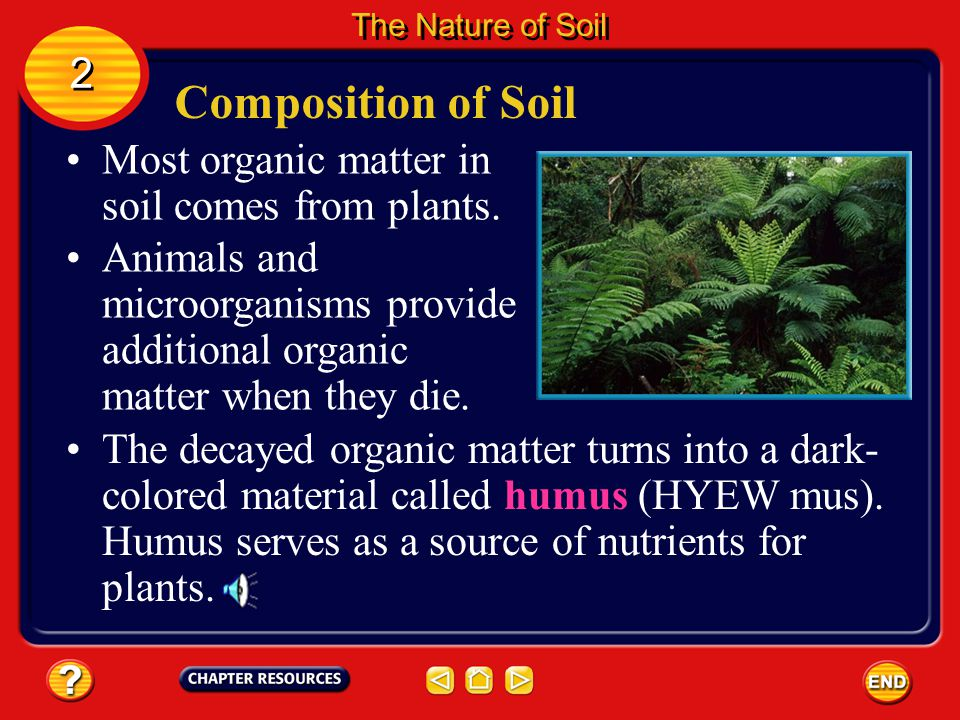 Composition of Soil The rock and mineral fragments found in soils come from rocks that have been weathered. 2 2 The Nature of Soil