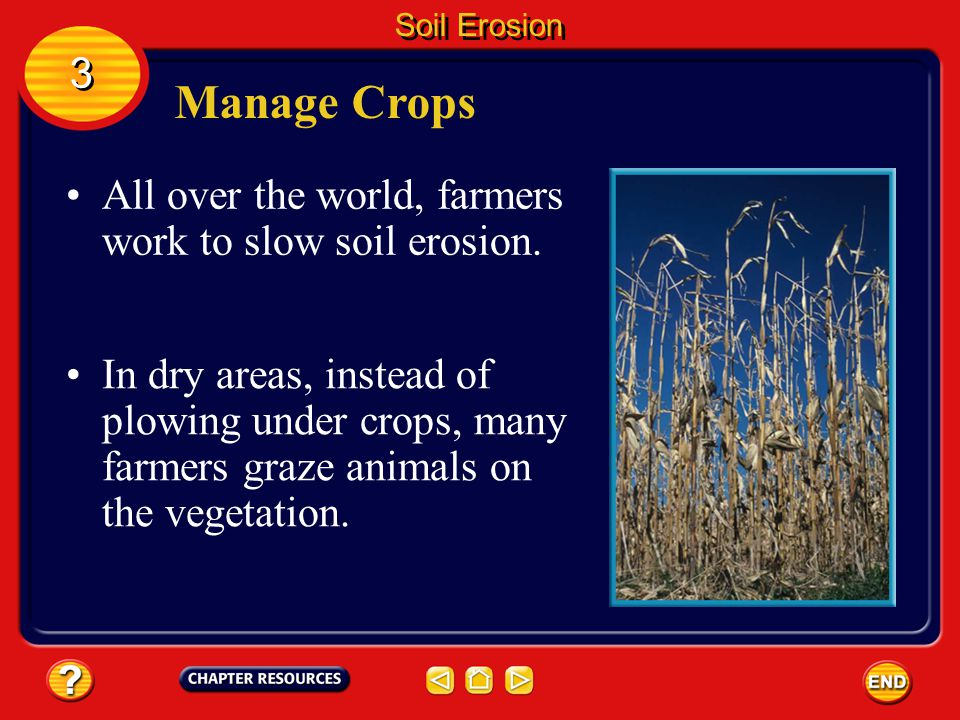 Preventing Soil Erosion Soil is a natural resource that must be managed and protected. People can do several things to conserve soil. 3 3 Soil Erosion