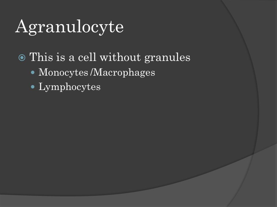 Agranulocyte  This is a cell without granules Monocytes /Macrophages Lymphocytes