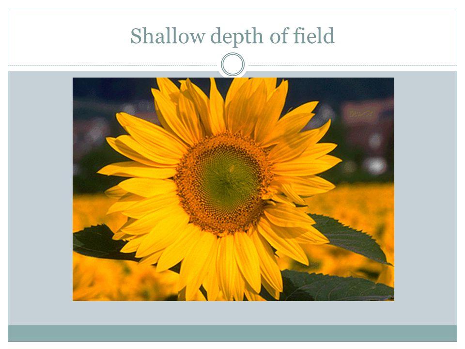 Shallow depth of field