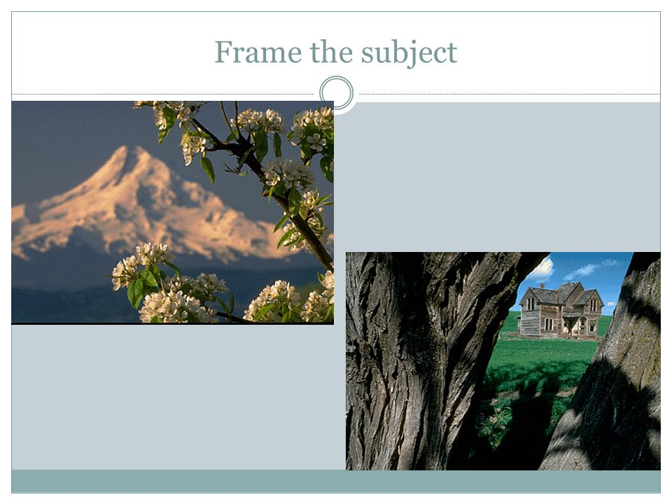 Frame the subject