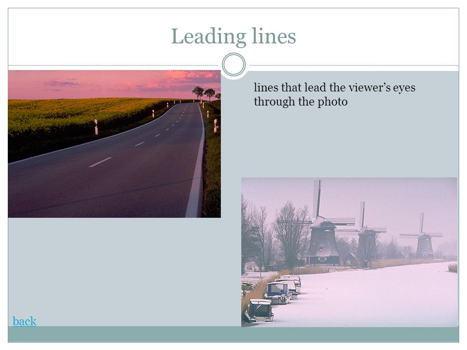Leading lines back lines that lead the viewer's eyes through the photo