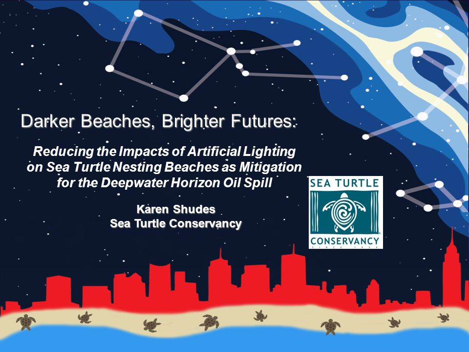 Darker Beaches, Brighter Futures: Reducing the Impacts of Artificial Lighting on Sea Turtle Nesting Beaches as Mitigation for the Deepwater Horizon Oil Spill Karen Shudes Sea Turtle Conservancy
