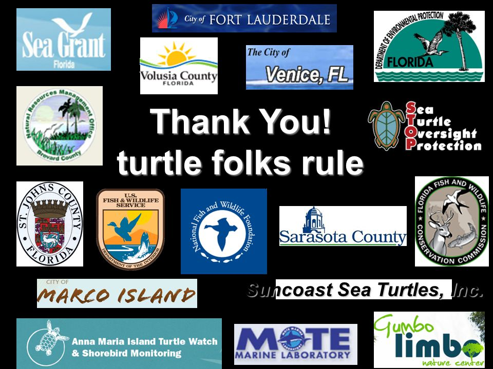 Suncoast Sea Turtles, Inc. Thank You! turtle folks rule