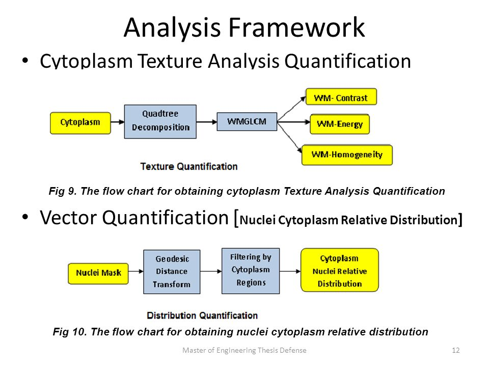 Analysis Framework Cytoplasm Texture Analysis Quantification Vector Quantification [ Nuclei Cytoplasm Relative Distribution ] Master of Engineering Thesis Defense12 Fig 9.