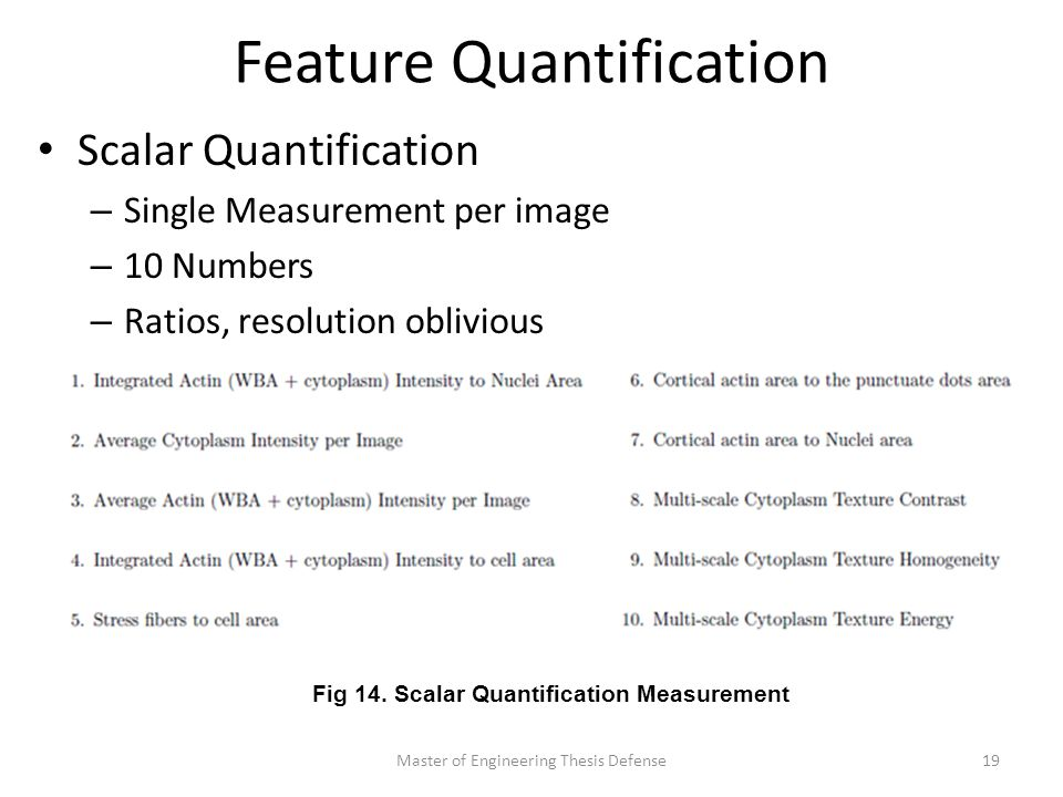 Feature Quantification Scalar Quantification – Single Measurement per image – 10 Numbers – Ratios, resolution oblivious Master of Engineering Thesis Defense19 Fig 14.
