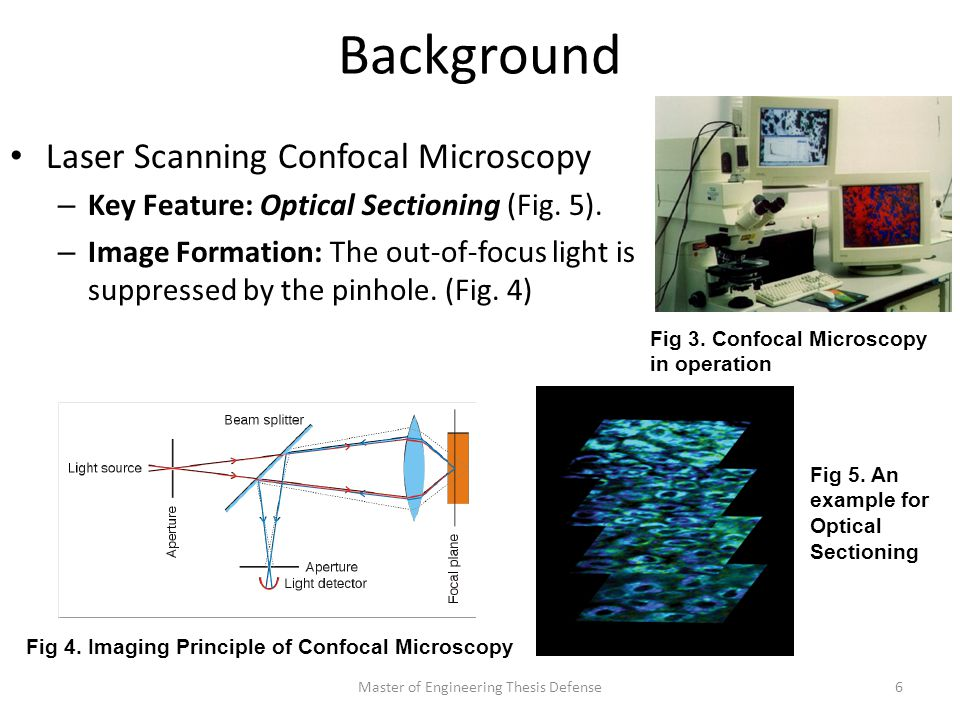 Background Laser Scanning Confocal Microscopy – Key Feature: Optical Sectioning (Fig.