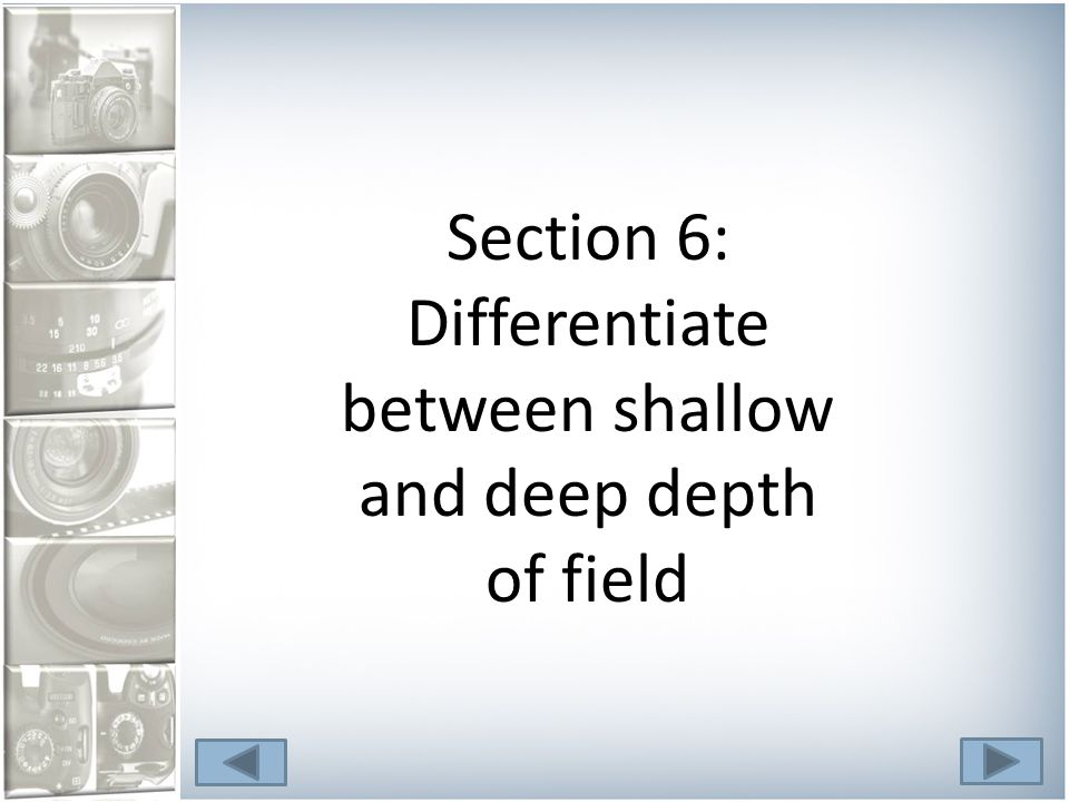 Section 6: Differentiate between shallow and deep depth of field