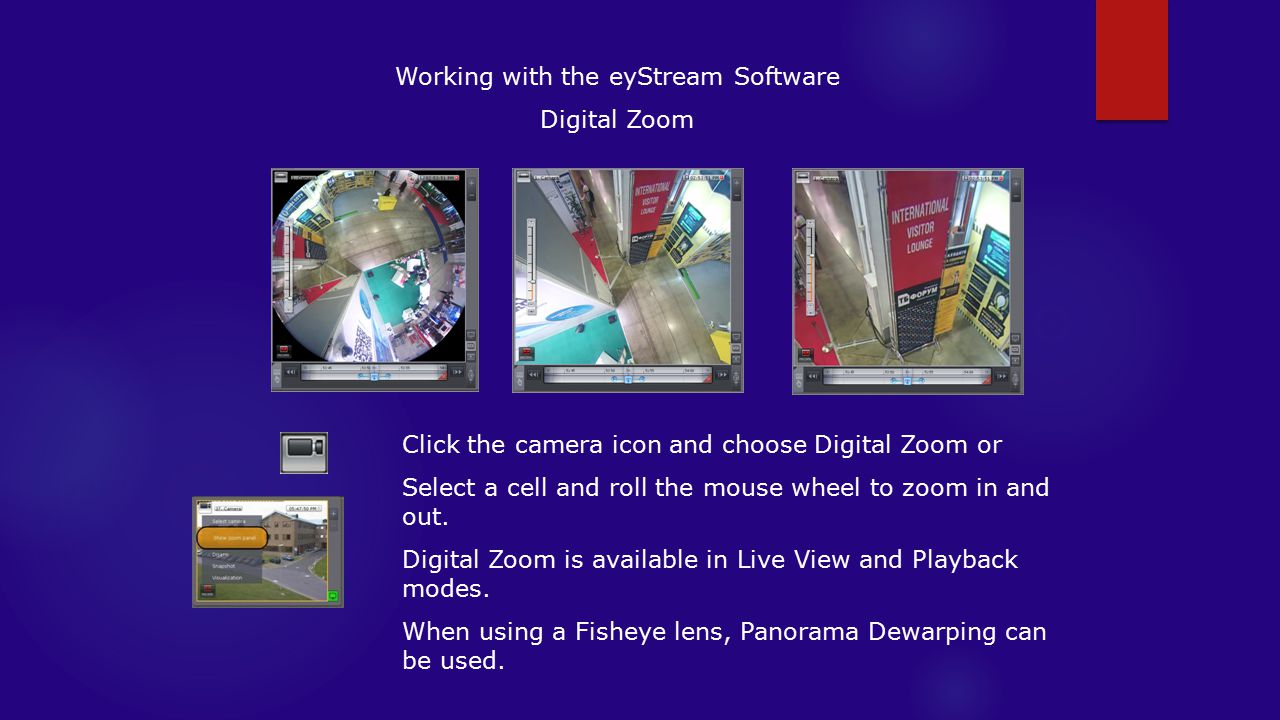 Working with the eyStream Software Digital Zoom Click the camera icon and choose Digital Zoom or Select a cell and roll the mouse wheel to zoom in and out.